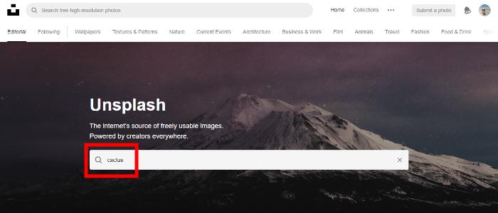 Keresés az Unsplash oldalán